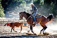 Cowboy roping at rodeo night at The Alisal Guest Ranch.