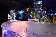 Het IJsbeelden Festival presenteert '200 jaar Koninkrijk der Nederlanden', een vorstelijke geschiedenis in ijs en sneeuw.<br /> <br /> Op de foto: IJssculptuur van de Radio Oranje / Wilhelmina
