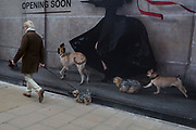 A gentleman walks his pet dog past a large construction hoarding for retailer Alaia that features a stylish lady and her lin of other dogs, in New Bond Street, on 6th February 2018, in London, England.