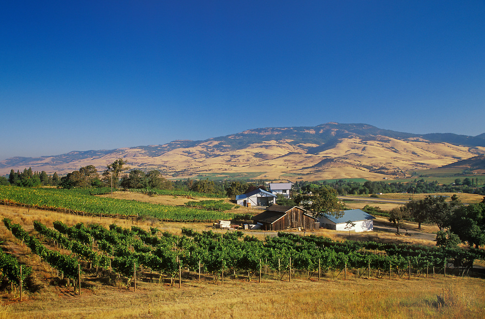 Weisinger's Vineyards & Winery and view across the Rogue Valley to the southern Cascade Mountains; Ashland, Oregon.