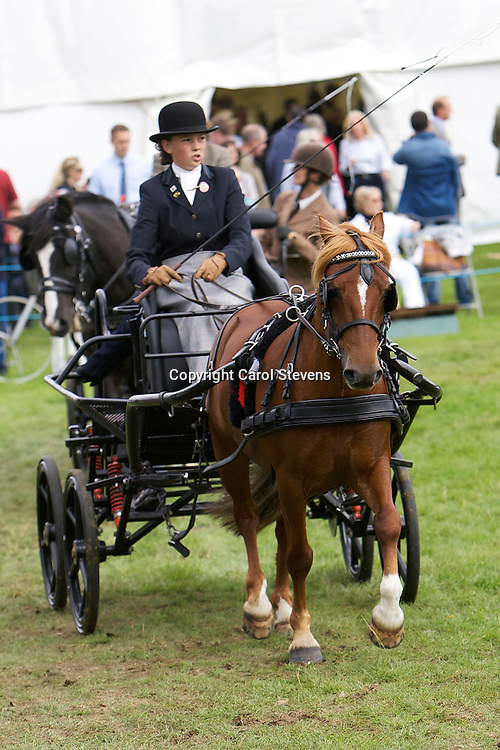 Ripley Show 2011 at Ripley Castle Park Harrogate  Sunday 14th August 2011
