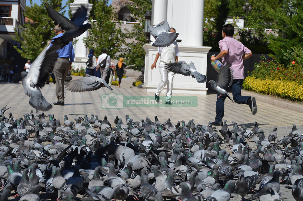 September 2, 2017 - Ankara, Turkey - People walk past pigeons as people enjoy their holiday by visiting the Haci Bayram-i Veli Mosque and its around on the second day of Muslims' sacrificial festival Eid al-Adha in Ankara, Turkey on September 02, 2017. (Credit Image: © Altan Gocher/NurPhoto via ZUMA Press)