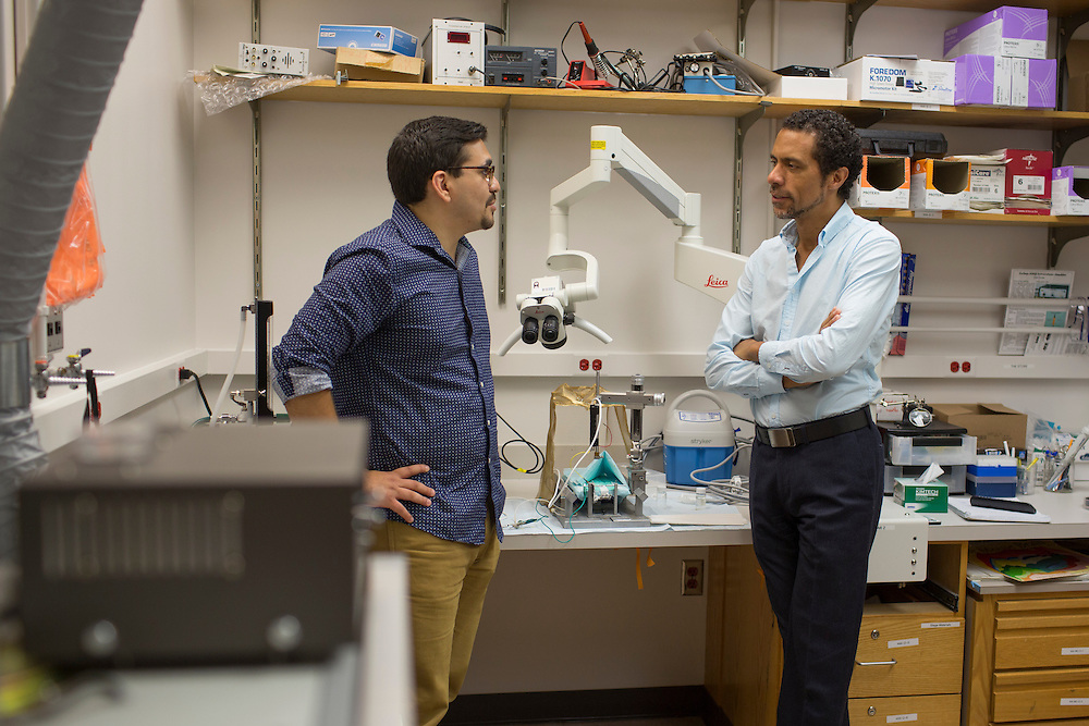 Research scientist Greg Gedman, left, works with Dr. Erich Jarvis, Associate Professor of Neurobiology at Duke University in Durham, North Carolina, Thurs., June 23, 2016. Few college students from underrepresented groups seek doctorates, particularly in STEM fields. Duke University&rsquo;s medical school created the Office For Biomedical Diversity six years ago to see if they could change that equation. Now, not only are more minority students are entering Duke's biomedical PhD programs, but they&nbsp;are performing better once there.&nbsp;Gedman is a first generation student and is part of the program managed by the Office of Biomedical Diversity. Dr. Jarvis is one of just a few black professors in the biomedical sciences PhD programs, so he said that he understands the value that a program like Duke's provides.<br /> <br /> D.L. Anderson for The Chronicle of Higher Education