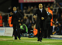 Football - FA Cup Fifth Round Replay - Birmingham vs. Chelsea<br /> Chelsea's caretaker Manager Roberto Di Matteo and Birmingham City's Manager Chris Hughton in action at St Andrews, Birmingham