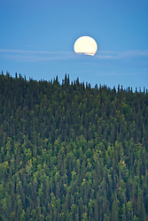 Full moon  near Midnight Dome overlooking Dawson City, Yukon Territory, Canada