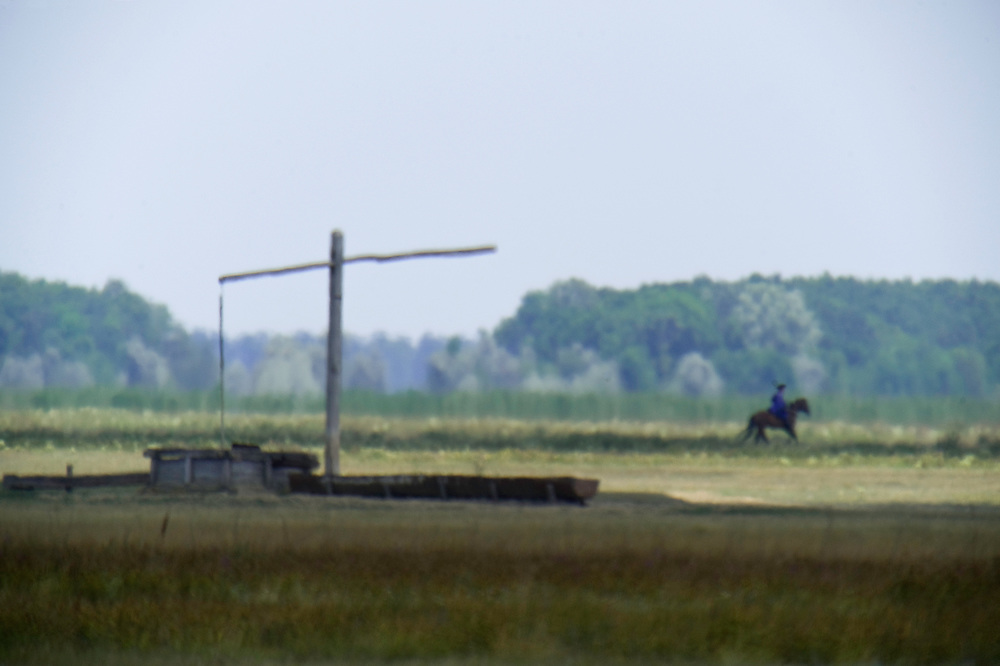 Hortobagy landscape with mirage (fata morgana) and herdsman at the water well,  Hortobagy National Park, Hungary