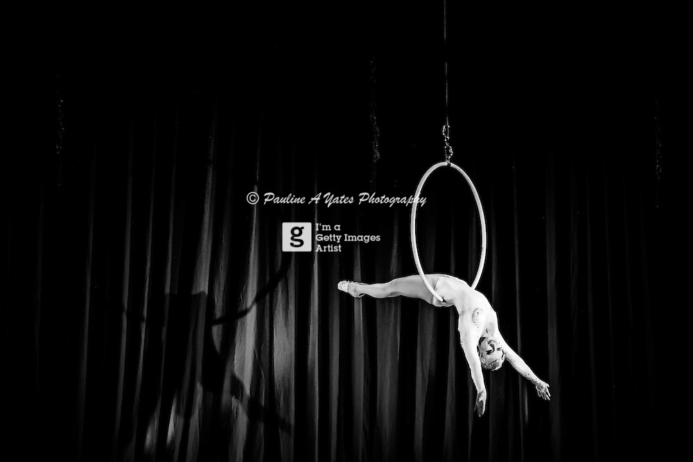 A Trapeze artist - Empress Stah - Performing at Salon Rouge in Cambridge.