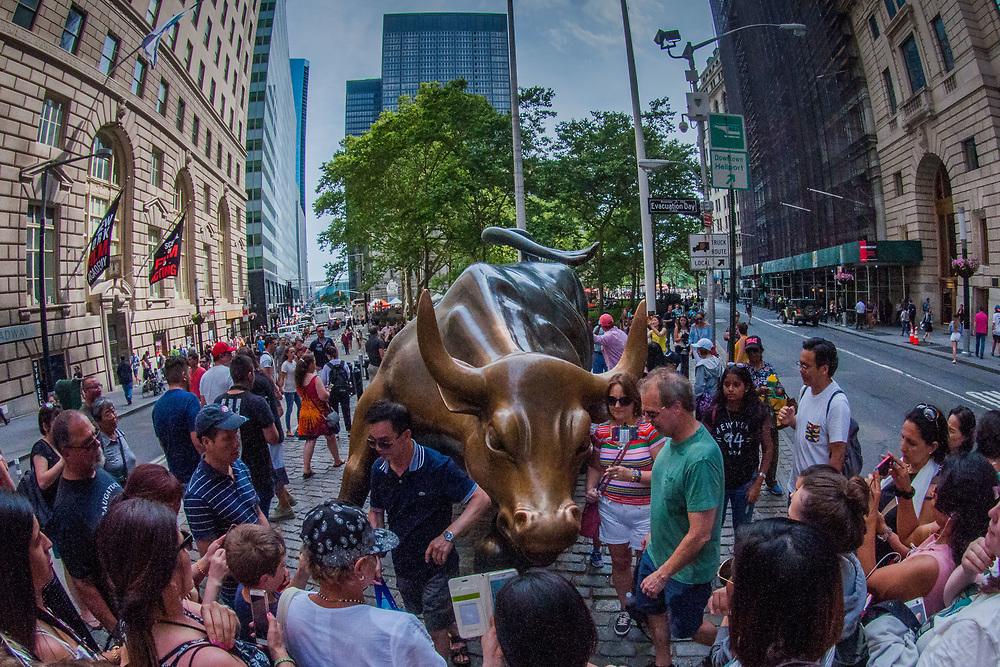Charging Bull Statue, Wall Street, Manhattan, New York, US