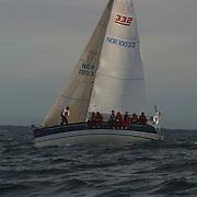 X 332<br /> N 10032