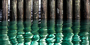 View of piles and reflections beneath Queens Wharf, Auckland, New Zealand.