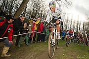 BELGIUM / BELGIQUE / BELGIE / CYCLOCROSS / VELDRIJDEN / CYCLO-CROSS / CYCLING / OVERIJSE / DRUIVENCROSS / ELITE / SVEN NYS /