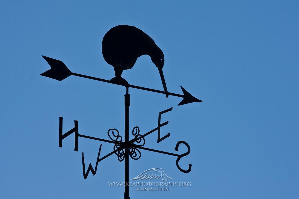 Kiwi, weather vane