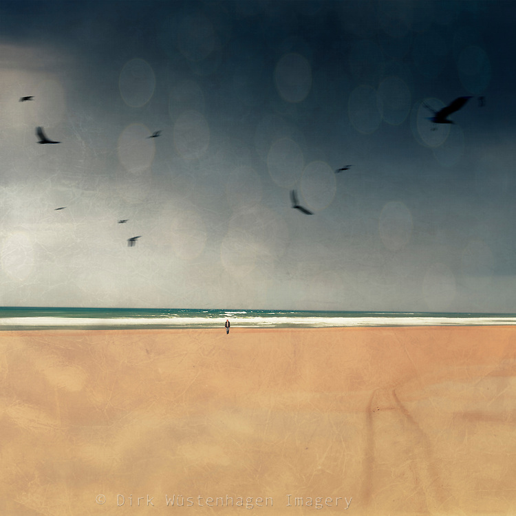 Single person on a beach with birds flyomg around - manipulated photograph<br /> Liceneses: http://www.trevillion.com/search/preview/trevillion/0_00201114.html