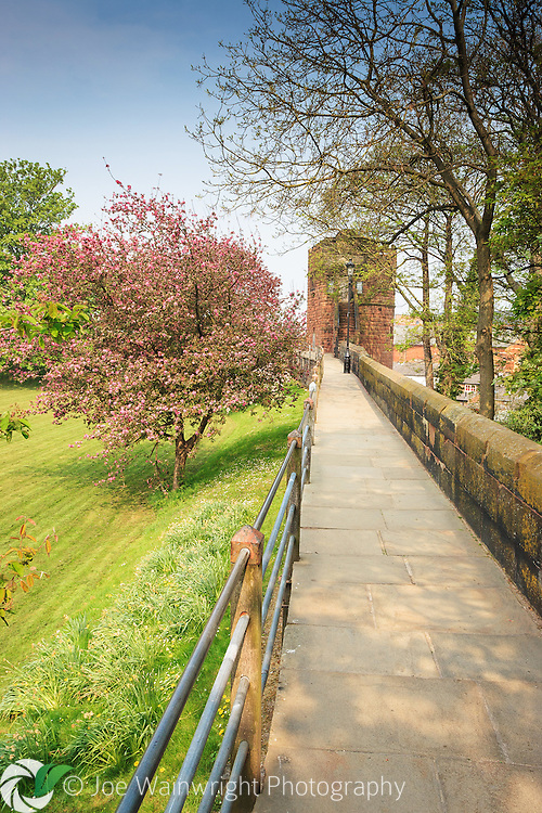 Chester city walls photographed in spring close to King Charles Tower and the grounds of the Cathedral.