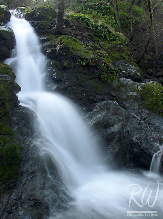 Cascade Canyon Waterfall in Marin Municipal Water District, Fairfax, California