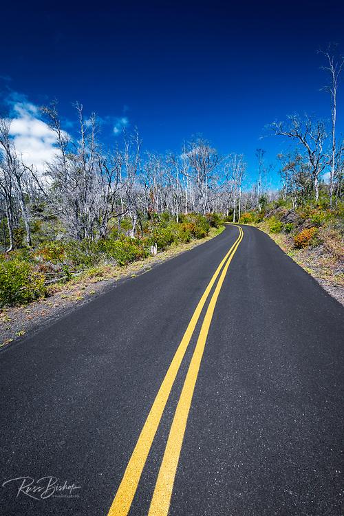 Mauna Loa Scenic Road, Hawaii Volcanoes National Park, Hawaii USA
