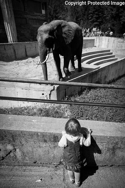 Fotografie deti v podani profesionalny fotograf Anton Fric, www.fotoportal.sk Fotky vasich deti zhotovi profesionalne v domacom prostredi. Sam je otcom styrch malych deti, cize si vie deti ziskat a fotografie deti tak posobia prirodzene. Okrem rodinnej fotografie je Anton Fric aj svdobny fotograf. Prevadzkuje stranku www.naucsafotit.sk a www.fotoportal.sk