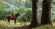Horse riding at Camore Wood, Dornoch, Sutherland, Forestry Commission Scotland