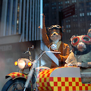 Mr. Fox and Possum in the Big Apple