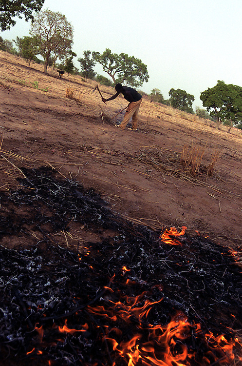 Farmers burn dried leaves and stems from last years harvest to prepare the land for planting before the beginning of the rainy season..Tanlili, Burkina Faso. 07/06/2004.Photo © J.B. Russell