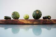 squash, zucchini