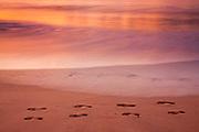 Pacific Ocean waves gradually erase footprints left on Makena Beach on the island of Maui, Hawai`i as the sun sets.