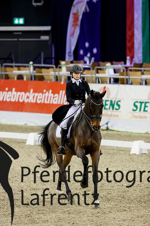 Vaughan, Joanne (GEO) Elmegardens Marquis<br /> Oldenburg - AGRAVIS Cup 2017<br /> © www.sportfotos-lafrentz.de/Stefan Lafrentz