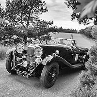 Car 20 Sholto Gilbertson / Mark Gold