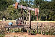 Pumpjack in Northern Louisiana in the Haynsville Shale region.