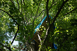 A tree house is positioned high above the Stop HS2 Wendover Active Resistance Camp on 17th July 2020 in Wendover, United Kingdom. Environmental activists from groups including Stop HS2 and HS2 Rebellion continue to protest against HS2, which is currently projected to cost £106bn and which will remain a net contributor to CO2 emissions during its projected 120-year lifespan, on environmental and economic grounds.