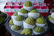 Taitung, Taiwan. Buddha's head tropical fruit, a delicacy grown in Taitung.