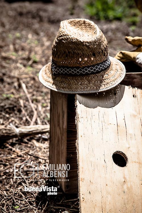 Emiliano Albensi<br /> 11/06/2013 Ariano Irpino (AV)<br /> Ritorno alla terra<br /> Nella foto: Gianimichele Lombardi, 42, mentre si prende cura degli ortaggi coltivati nei suoi terreni ad Ariano Irpino, in provincia di Avellino. Nel 2008 Gianmichele ha deciso di abbandonare il suo lavoro da broker per fare il contadino.