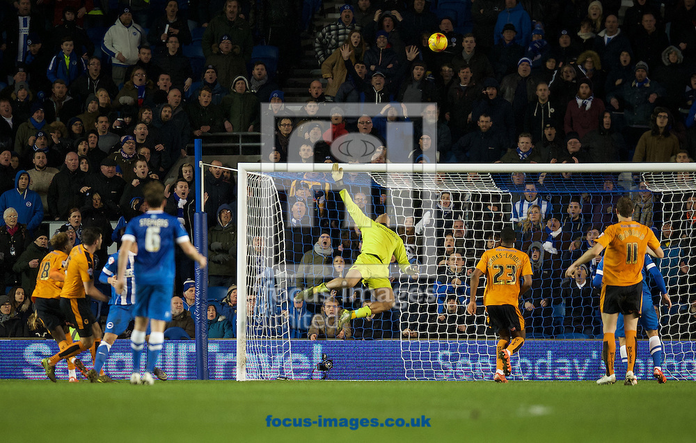 Goalkeeper Carl Ikeme of Wolverhampton Wanderers makes a save in the dying minutes of the game to ensure their 0-1 win during the Sky Bet Championship match at the American Express Community Stadium, Brighton and Hove<br /> Picture by Alan Stanford/Focus Images Ltd +44 7915 056117<br /> 01/01/2016