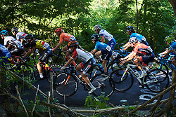 The peloton on lap one during La Course by Le Tour de France, a 121 km road race starting and finishing in Pau, France on July 19, 2019. Photo by Sean Robinson/velofocus.com