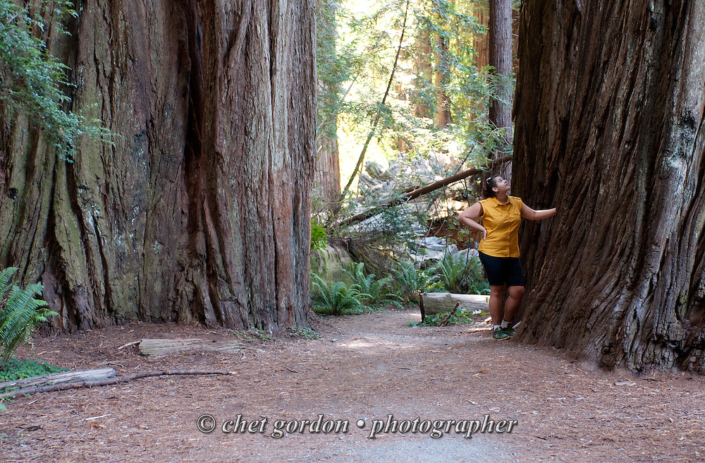 Natasha between two Redwood trees in the Jedidiah Smith Redwoods State Park in Crescent City, CA on Monday, July 25, 2016.  © Chet Gordon • Photographer