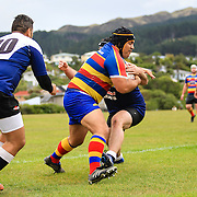 Tawa v Petone (First Grade) - 23 April 2016