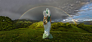 When it rains look for rainbows.<br /> When its dark look for stars.<br /> When diving deep look for mermaids.<br /> When looking within know you are the angel you seek.<br /> <br /> <br /> Mt. Diablo, California Full Rainbow with rolling green hills and Mermaid Angel.<br /> <br /> <br /> 20120411-20120411-DCS_7587-7630-Angel Mermaid-RAINBOW.tif