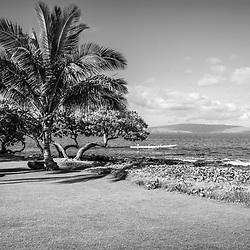 Wailea Makena Maui Hawaii black and white photo with a palm tree, outrigger canoe and Kaho'olawe Island along the Pacific Ocean. Copyright ⓒ 2019 Paul Velgos with All Rights Reserved.