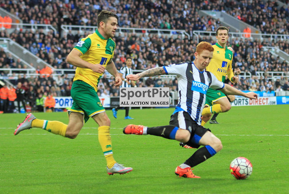 Newcastle United V Norwich City Premier League 18th October 2015; Jack Colback (Newcastle, 4)  during the Newcastle V Norwich match, played at St. James Park, Newcastle.
