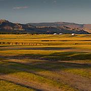 Mongolian horseman in vast landscape (, Mongolia - Sep. 2008) (Image ID: 080908-1859282a)