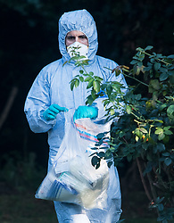 © Licensed to London News Pictures. 03/09/2018. London, UK. Police forensics at the scene of a shooting at Tottenham Cemetery, North London. Police were called to the cemetery at 07:53 this morning where they found a 22-year-old man suffering from gunshot wounds. He was pronounced dead at the scene. Photo credit: Ben Cawthra/LNP