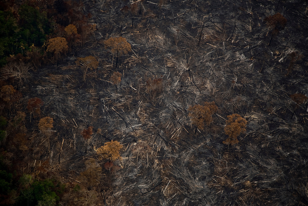 Para State, Brazil. August 25th 2007. Flight from Cuiaba to Alta Floresta (Brazilian Amazon). Aerial view of the rainforets during the burning season were big sections are set on fire by farmers to be cleared for soy farming or cattle grazing.