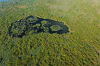 Aerials over the Danube delta, Danube delta rewilding area, Romania