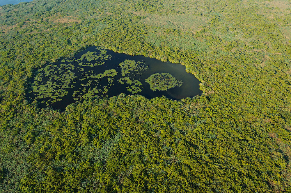 Aerials over the Danube delta, Danube delta rewilding area, Romania
