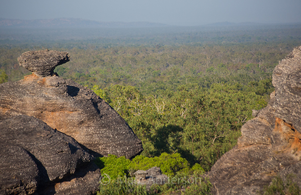 View of the forest surrounding Nourlangie Rock, Kakadu National Park, Northern Territory