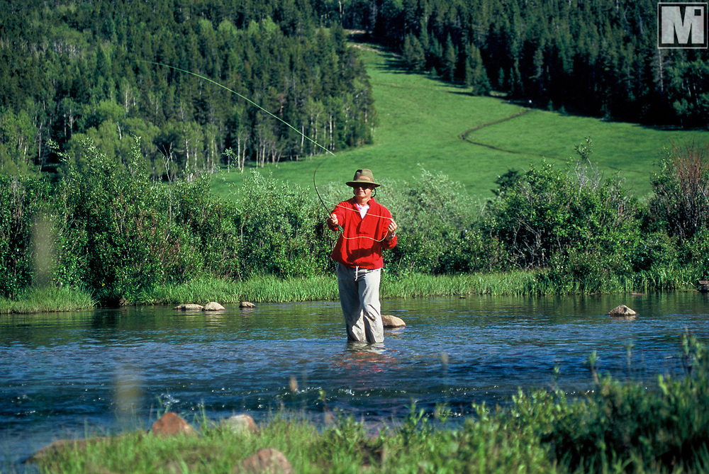 Fly fisherman in Buffalo, Wyoming, fishing in a creek in the Big Horn Mountains. Model release available.