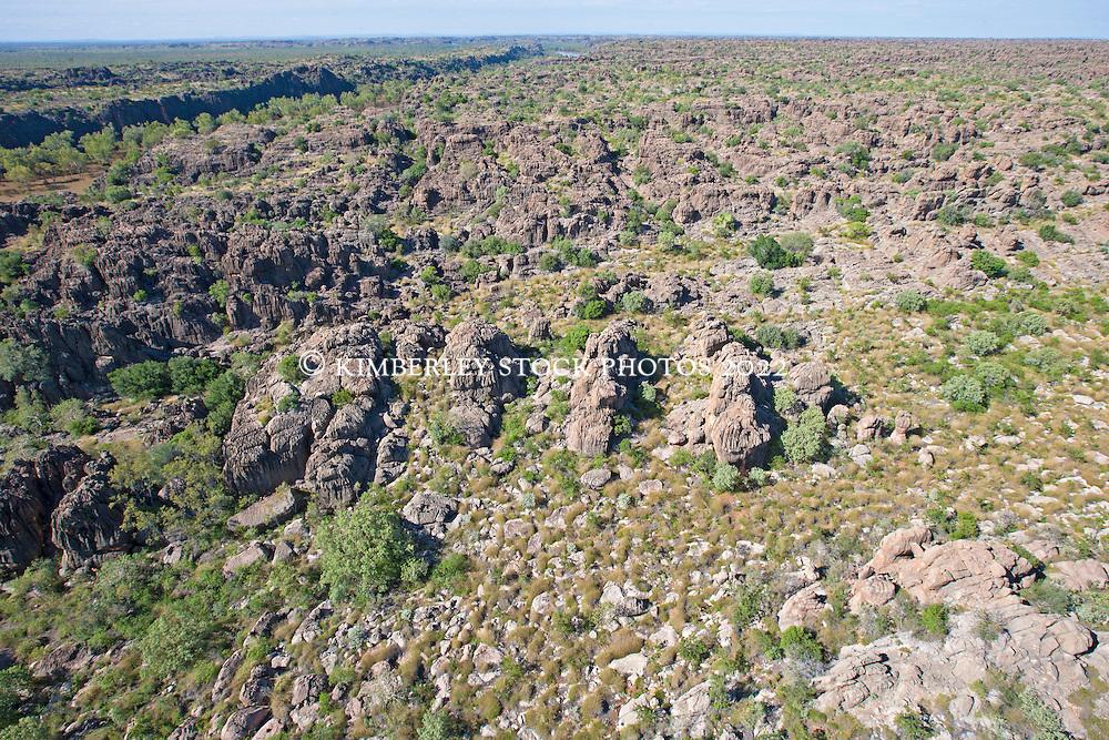 The Devonian reef exposed beside Geikie Gorge.