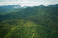 """Aerial view of the Foja Mountains, Papua, Indonesia.<br /><br />""""Bog Camp"""" is small clearing at upper right.  Two lakes of different color in lower left."""