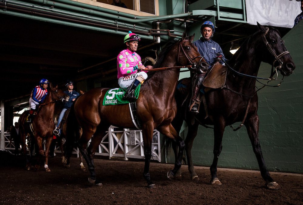 February 07 2015: Firing Line and Gary Stevens at the Bob Lewis Stakes at Santa Anita Park in Arcadia CA. Alex Evers/ESW/CSM`