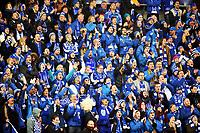 Fotball , 23. november 2014 , NM-finale herrer , cupfinale , Odd - Molde 0-2<br /> <br /> illustrasjon , supportere , supporter  , skjerf , publikum , MOldefans